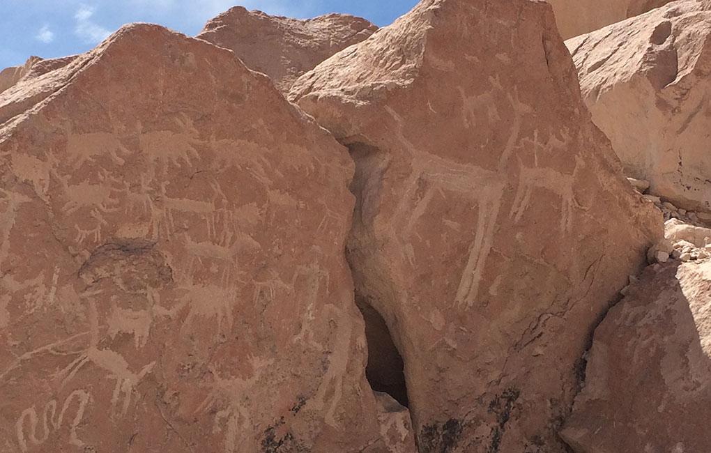 Petroglifos-de-Ofragia-en-Arica