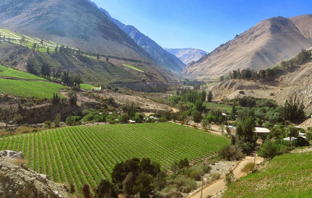 Valle-del-Elqui-Chile